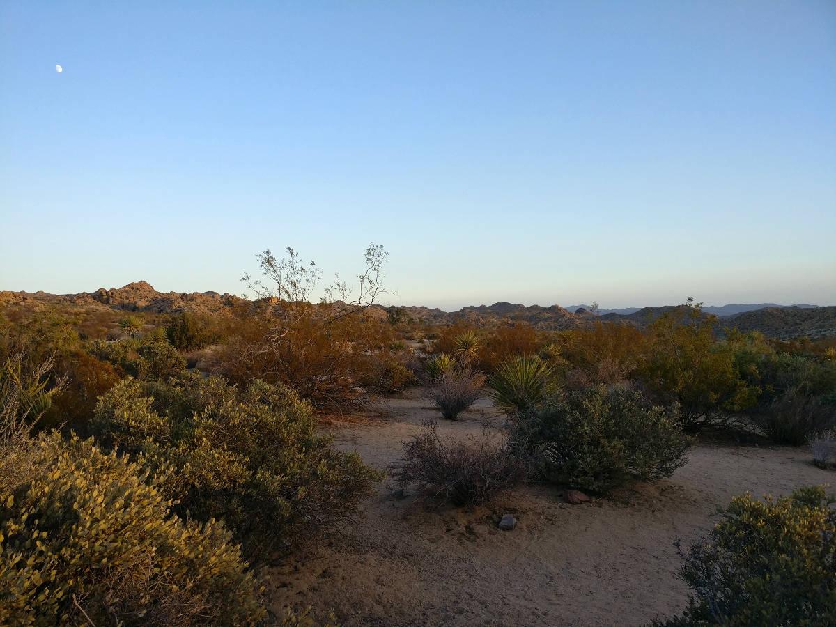 Joshua Treen kansallispuisto, Shining Journey -matkablogi