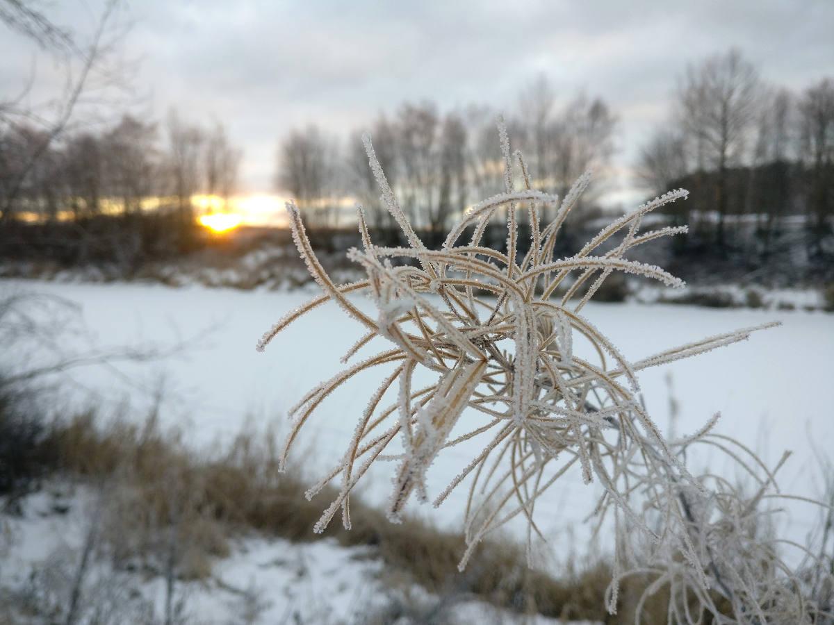 Shining Journey -matkablogi, Suomi, talvi