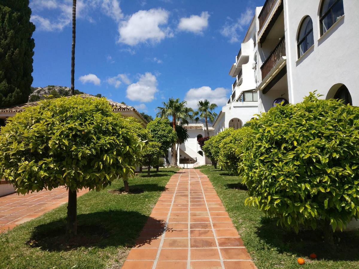 Shining Journey -matkablogi, Fuengirola, Los Pacos