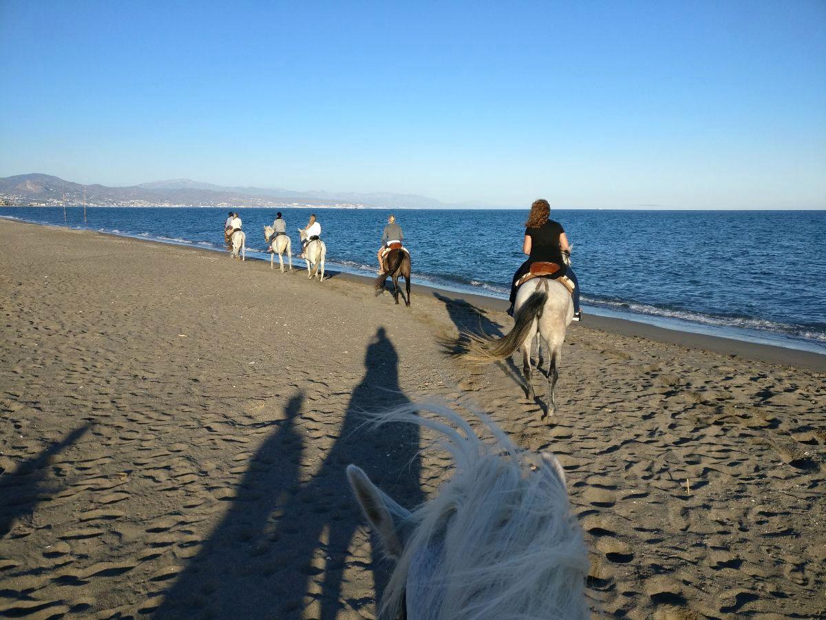 Ratsastus merenrannalla, Guadalmar