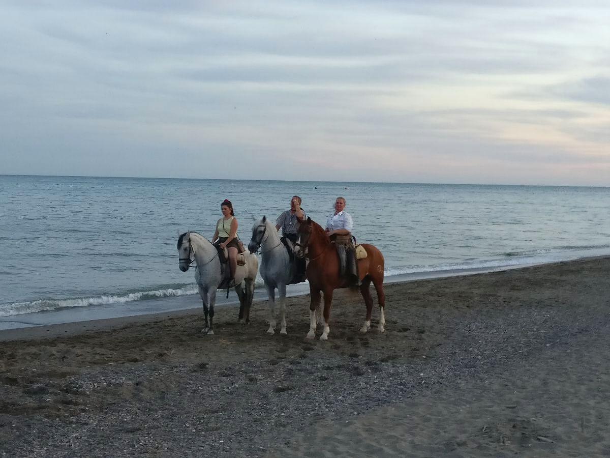Torremolinosin rannalla ratsastamassa
