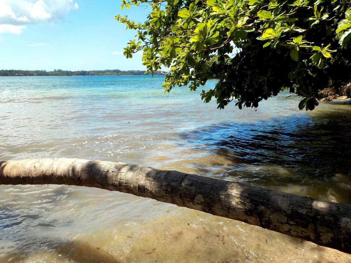 Solarte Island, Hospital Point