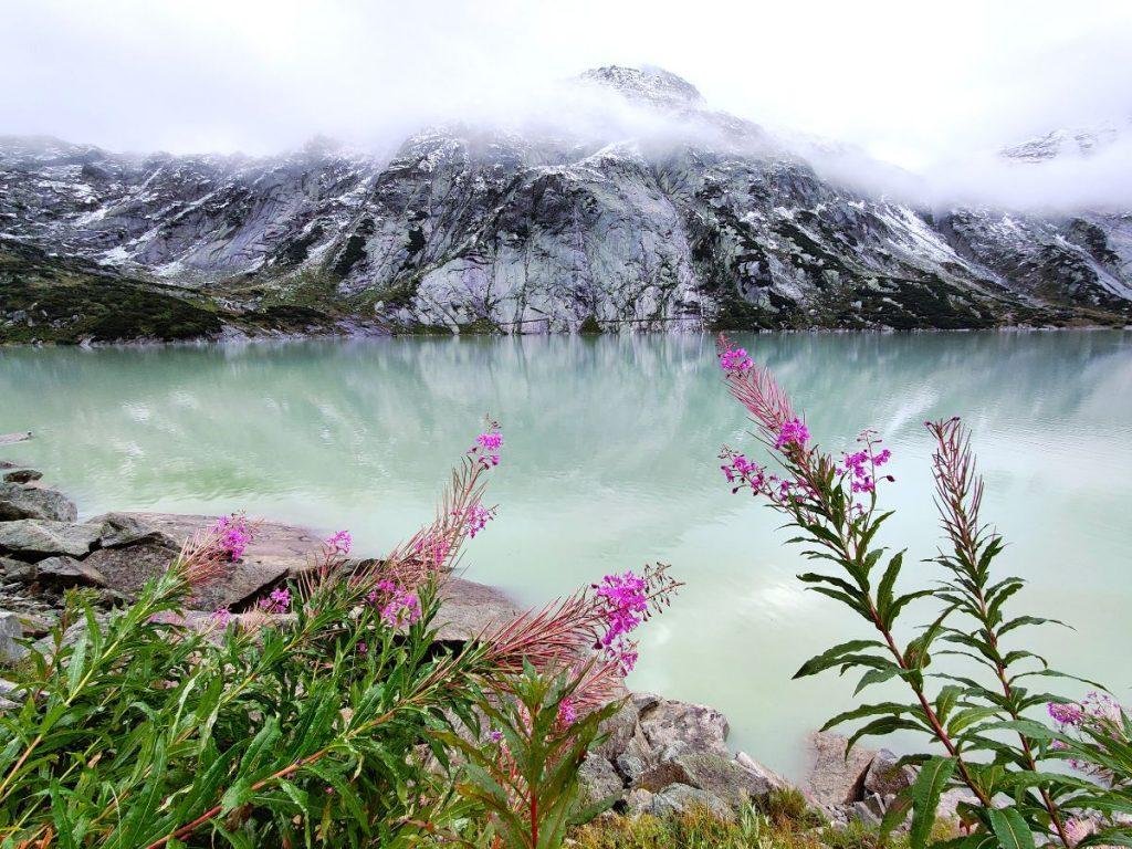 Sveitsi Alpit
