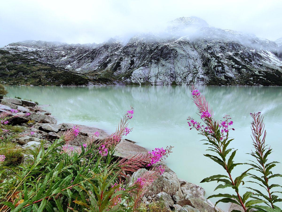 Alpit, järvi